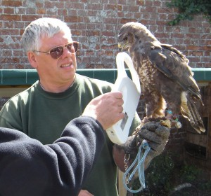 McManus-Dunkley holding one of the forfeited birds – a European Buzzard which is shown being scanned for a microchip during the AHVLA inspection on 8th August 2011. Credit: AHVLA.