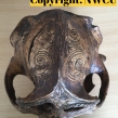 Dayak-carved-orangutan-skull-seized-by-South-Wales-Police-July-2018-©-IG-2