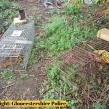 Gloucestershire-Police-badger-investigation
