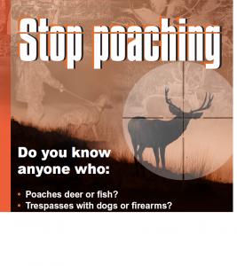 stop poaching jpeg